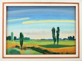 B. Séday Mária (1925-2009): Alföldi táj . Olaj, farost, jelzett. Élénél kissé sérült fa keretben. 40×59,5 cm