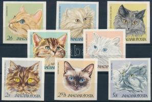 1968 Macskák vágott sor (8.000)
