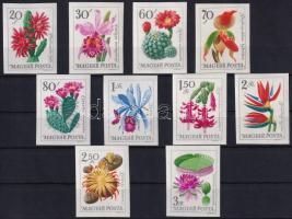 1965 Virág (VI.) - Botanikus kertek virágai vágott sor (5.500)