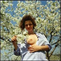 cca 1988 A természet bő ajándéka, Menesdorfer Lajos (1941-2005) budapesti fotóművész hagyatékából, 1 db vintage NEGATÍV, 6x6 cm