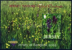 2003 Vadon növő orchideák Mi blokk 38