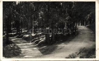 Borsec, promenade, Borszék, Szerelmesek sétánya