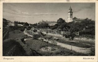 Beregszász, Berehove; church (wet damage), Beregszász, templom (ázott)