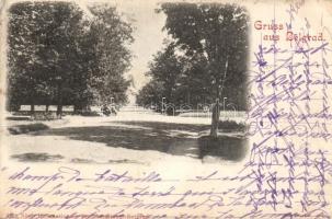 1898 Belgrade, park