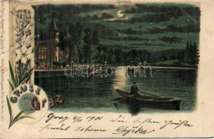Graz Hilmteich lake, at night, floral, litho, Graz Hilmteich tó, éjjel, floral, litho