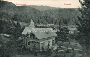 Borszék Villa Reitter, Borszék Reitter nyaraló