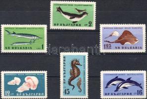 Sea in the Black Sea set, A Fekete-tenger állatai sor, Tiere im Schwarzen Meer Satz