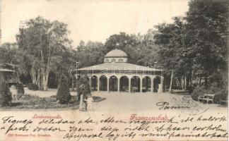 Frantiskovy Lázne, Franzensbad;  Louisenquelle / fountain