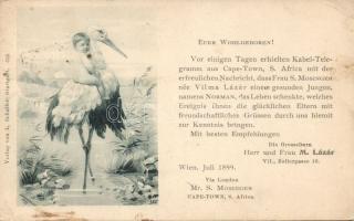 1899 Birth greeting card of the M. Lázár family s: H. Hildenbrand, 1899 Új baba születése, M. Lázár család üdvölőlapja s: H. Hildenbrand