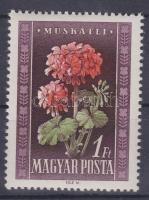 1950 Virág 1Ft piros festékfoltok az alsó feliratban