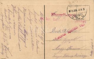 1917 Haditengerészeti posta képeslap kuk Seefliegerkorps Pola - Budapest