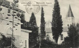 Abbazia, Blühende Agave vor dem Glacier confiser / Blooming Agave on the Glacier confectionery