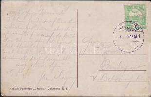 1914 Képeslap Tengeri posta bélyegzéssel