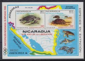 1980 Olimpia: Teknősök blokk Mi 114