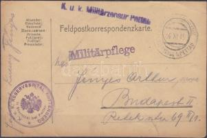 1915 Tábori lap hadifogolytáborból/Field postcard from POW-cargo KGIEGSGEFANGENENLAGER STRENTHAL b. PETTAU - Budapest (szakadt/tear)