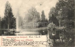 1898 Olomouc, Olmütz; Schwanenteich, Stadtpark / lake, park