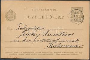 1901 Díjjegyes levelezőlap kézi festéssel CZIFFER - Kolozsvár