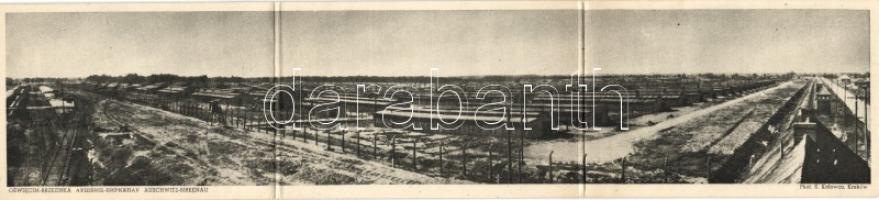 Oswiecim-Brzezinka, Auschwitz-Birkenau; town of barracks, concentration camp, three-tile panoramacard