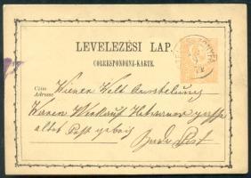 1874 Díjjegyes levelezőlap / PS-card OSTFI-ASSZONYFA - Budapest