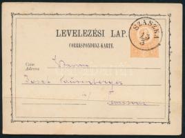 1873 Díjjegyes levelezőlap / PS-card SZASZKA - Temesvár
