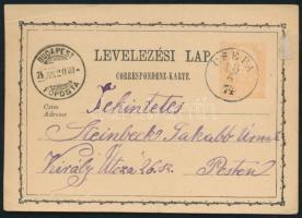 1874 Díjjegyes levelezőlap / PS-card CSÉPA - BUDAPEST