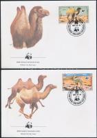 1985 WWF: Kétpúpú teve sor Mi 1707-1710 4 db FDC-n