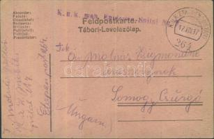 1917 Tábori lap mozgó járványkórházból K.u.K. mob. Epidemie - Spital Nr 7 + EP 264