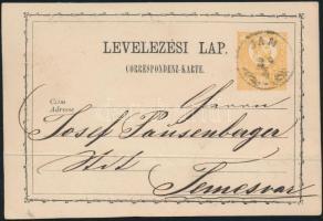 1873 2kr díjjegyes levelezőlap / PS-cardJAM - Temesvár