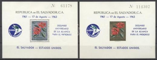 1963 Szövetség a haladásért fogazott és vágott blokk Mi 16 + Mi 17