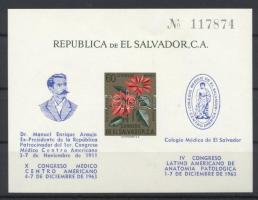 1963 4. Latin-amerikai orvoskongresszus blokk Mi 19