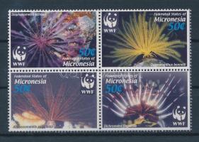 2005 WWF Tengeri élőlények négyestömb Mi 1674-1677