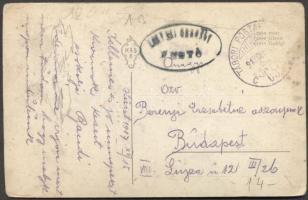 1917 Képeslap TP 650C - Budapest