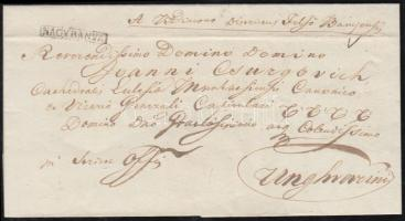 1837 Ex offo NAGYBANYA - Unghvarini