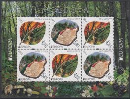 2011 Europa CEPT: Az Erdő bélyegfüzetlap H-Blatt 13