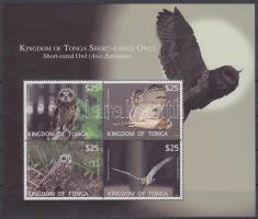 Owls block Baglyok blokk