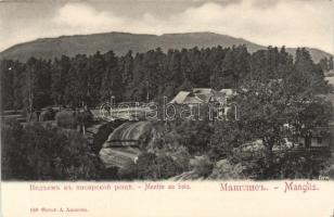 Manglisi, Manglis; forest