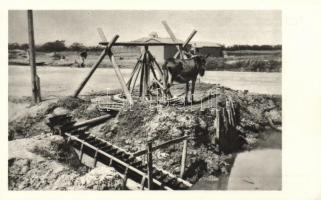 Xianxian, Sien-Hsien; Austrian Catholic mission in China, Irrigation of the fields