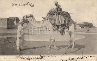 Cairo, Egyptian folklore, camel, Kairó, egyiptomi folklór, teve