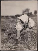 cca 1925 Kankowszky Ervin (1884-1945): Kévekötő, pecséttel jelzett vintage fotó, 24x18 cm