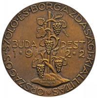 """Hungary 1922. """"National Grape and Wine Exhibition"""" Br commemorative medallion. Sign: MÁTRAI / OHMANN (57mm), Mátrai Lajos (1875-1966) / Ohmann Béla (1890-) 1922. """"Országos Szőlő és Borgazdasági Kiállítás - Budapest 1922"""" Br emlékérem (57mm)"""