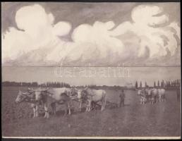 cca 1930-1940 Hajdú János: Tavaszi szántás, vintage montázs, festett felhőkkel, jelzetlen, Hajdú János csongrádi fényképész hagyatékából, 16x21 cm