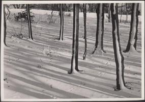 1930-1935 Kinszki Imre (1901-1945): Winter design. Vintage fotó, hátoldalán szerzői pecséttel jelzett, feliratozott, 12x17cm