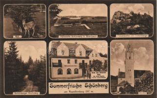 Bad Brambach, Schönberg am Kapellenberg, Hotel zum Deutschen Haus, Kirche, Hirschberge, Kirchsteig