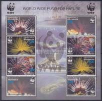 2005 WWF: Tengeri csillagok kisív Mi 1674-1677