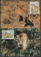 1984 WWF: Tigrisek sor 4 db CM-en Mi 706-709