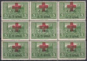 1924 Vöröskereszt (II) 5Q 9-es tömb Mi 100