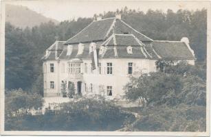 Celje, Cilli (?) villa, photo