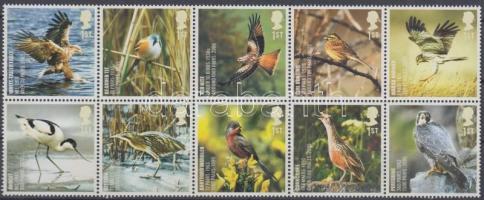 2007 Veszélyeztetett természet: madarak tízestömb Mi 2558-2567