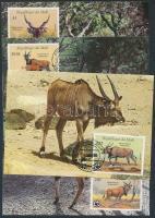1986 WWF Állatok sor Mi 1078-1081 4 CM