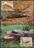 WWF Crocodiles set 4, WWF krokodilok sor 4 CM